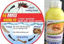 diệt côn trùng tại quận 9