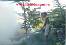 Diệt muỗi, dịch vụ diệt muỗi