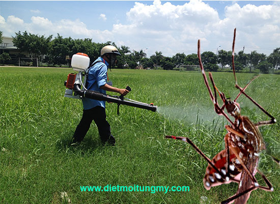 diệt muỗi tại quận 3