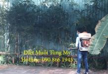 Phun Muoi